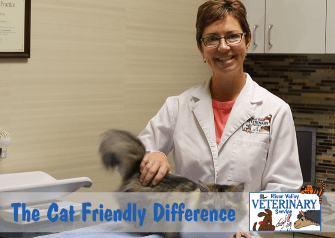The Cat Friendly Difference