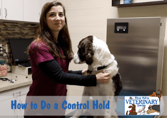 How to Do a Control Hold