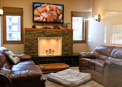 Pet Living Room